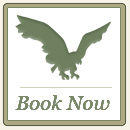 Book Now at Hawk