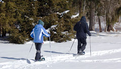 Snowshoeing is a perfect activity for families and outdoor enthusiasts of all ages