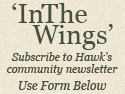 Subscribe to In The Wings