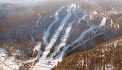 Hawk Inn And Mountain Resort Bear Creek Mountain Club